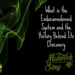 What is the Endocannabinoid System and the History Behind Its Discovery
