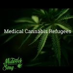 Medical Cannabis Refugees in the US