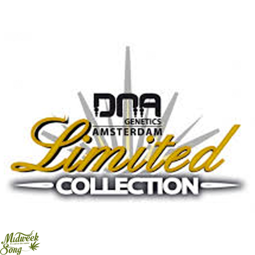 DNA Genetics Limited Collection