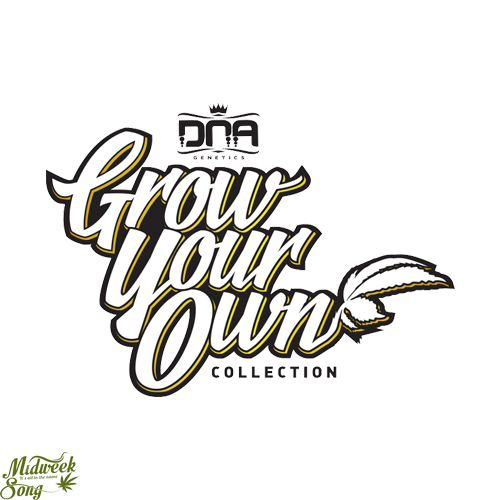 Grow Your Own by DNA Genetics