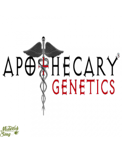 Black & Blueberry Apothecary Genetics