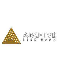 Archive Seeds – Amnesia Haze BX1 Cannabis Seeds