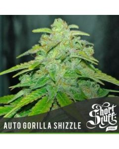 Short Stuff Seeds – Auto Gorilla Shizzle Marijuana Seeds