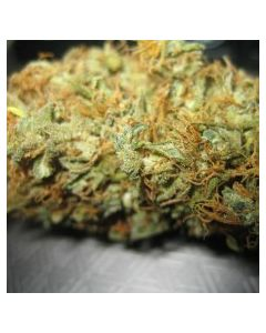 Jordan of The Islands – BC Big Bud Marijuana Seeds