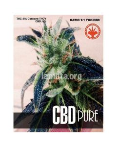 Pure Seeds – CBD Pure Marijuana Seeds