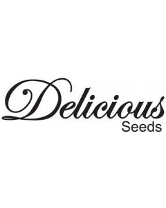 Delicious Seeds – Cannabis Winners Mix #2 Marijuana Seeds