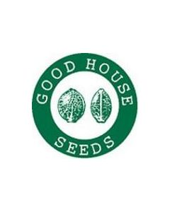 Goodhouse Seeds – Blue Crazy Cannabis Seeds