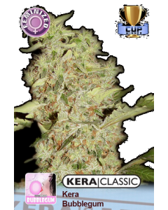Kera Seeds – Bubblegum Cannabis Seeds