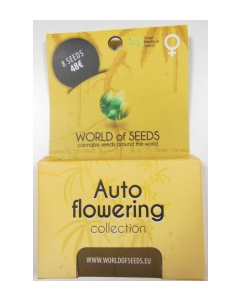 World of Seeds – Auto Collection Cannabis Seeds