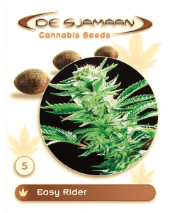 De Sjamaan Seeds – Easy Rider Marijuana Seeds