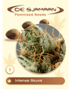 De Sjamaan Seeds - Intense Skunk
