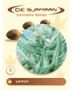 De Sjamaan Seeds - Lemon