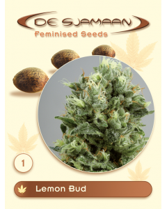 De Sjamaan Seeds - Lemon Bud