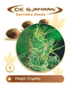 De Sjamaan Seeds - Magic Crystal