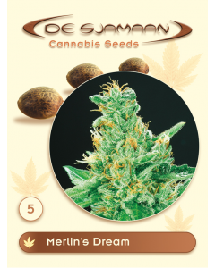 De Sjamaan Seeds - Merlin's Dream