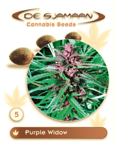 De Sjamaan Seeds - Purple Widow