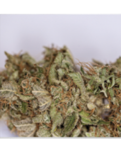 Blim Burn Seeds – Blue Dream Cannabis Seeds